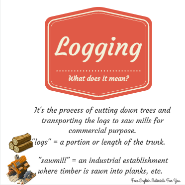 logging_-_vocabulary