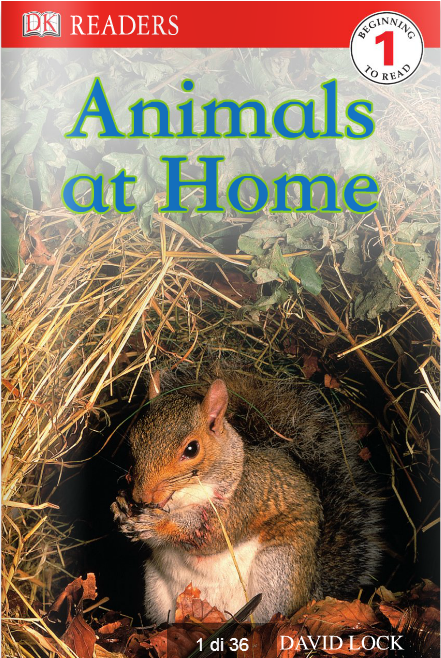 Animals_at_home