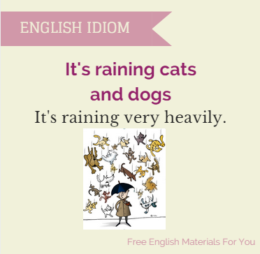 It's_raining_cats_and_dogs
