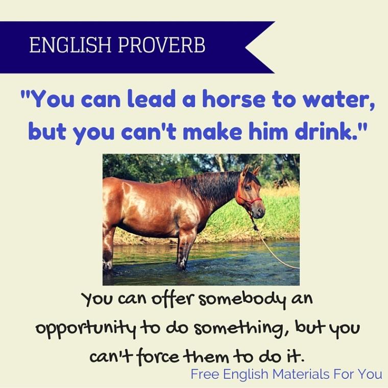 ENGLISH PROVERB 31-08