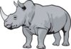 rhino-gray-th.png