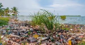 pollution_in_maracaibo_lake